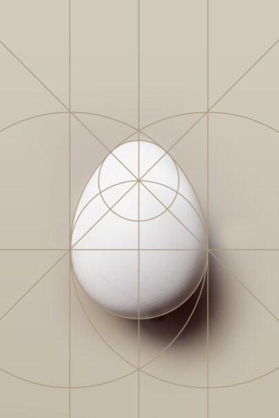 idealne proporcje jaja