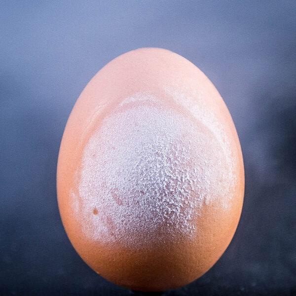 mrożone jajo
