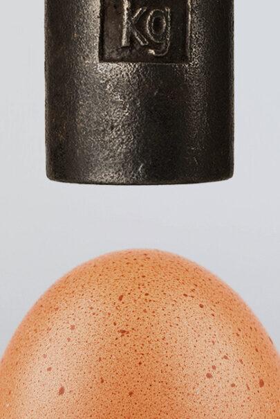 jajo może utrzymać nacisk 150kg